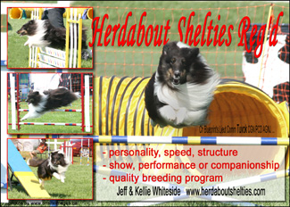 Herdabout Shelties