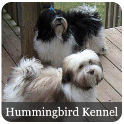 Hummingbird Kennel