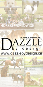 Dazzle by Design Graphics Studio Inc.